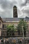 BK City in Spring Delft June 2009